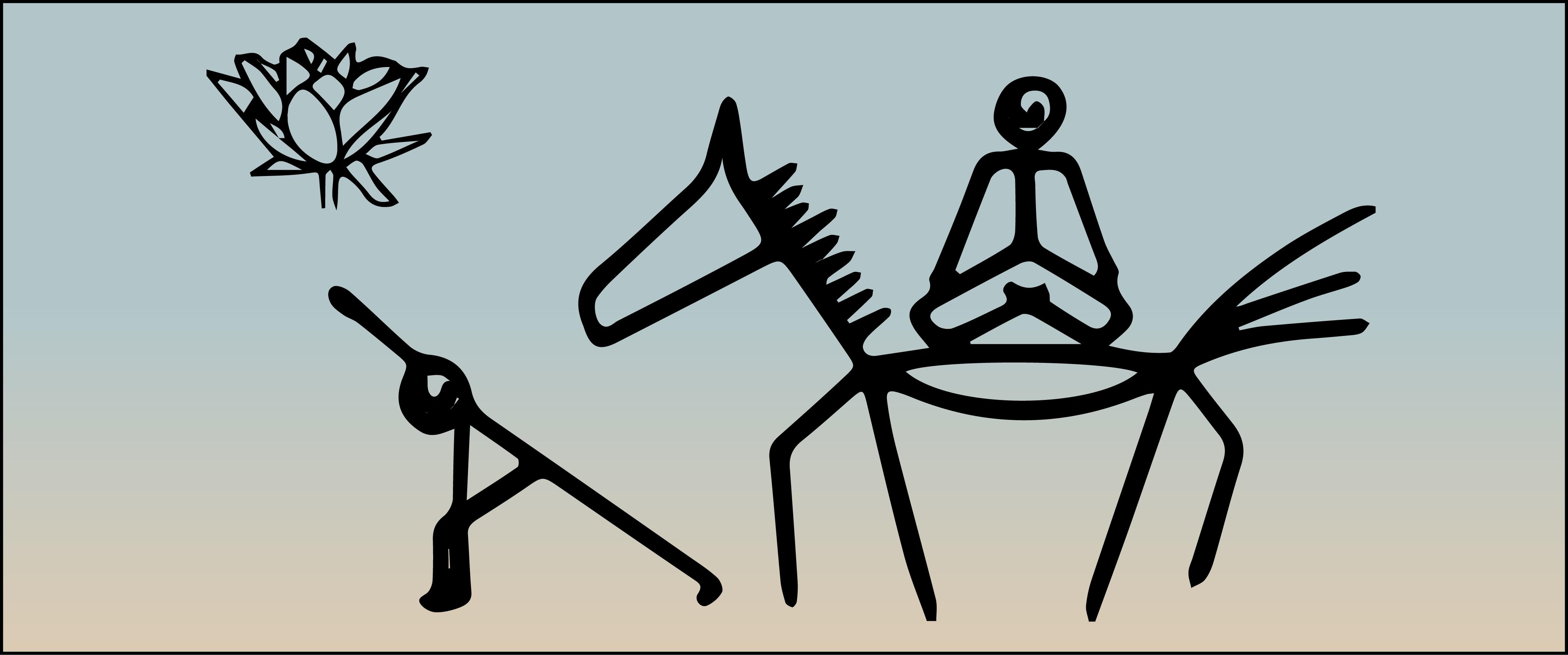 Yoga ed equitazione – Enrico Scapin